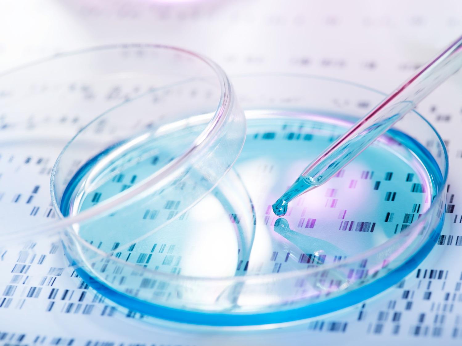 Die Entschlüsselung des Erbguts macht Hoffnung für die Verbesserung der Therapie von Lungenkrebs